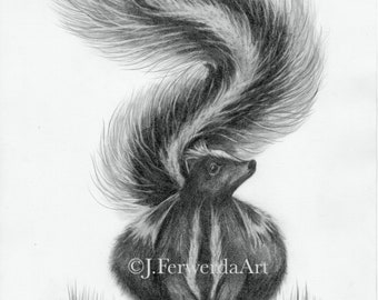 Pencil Drawing - Delicate Option