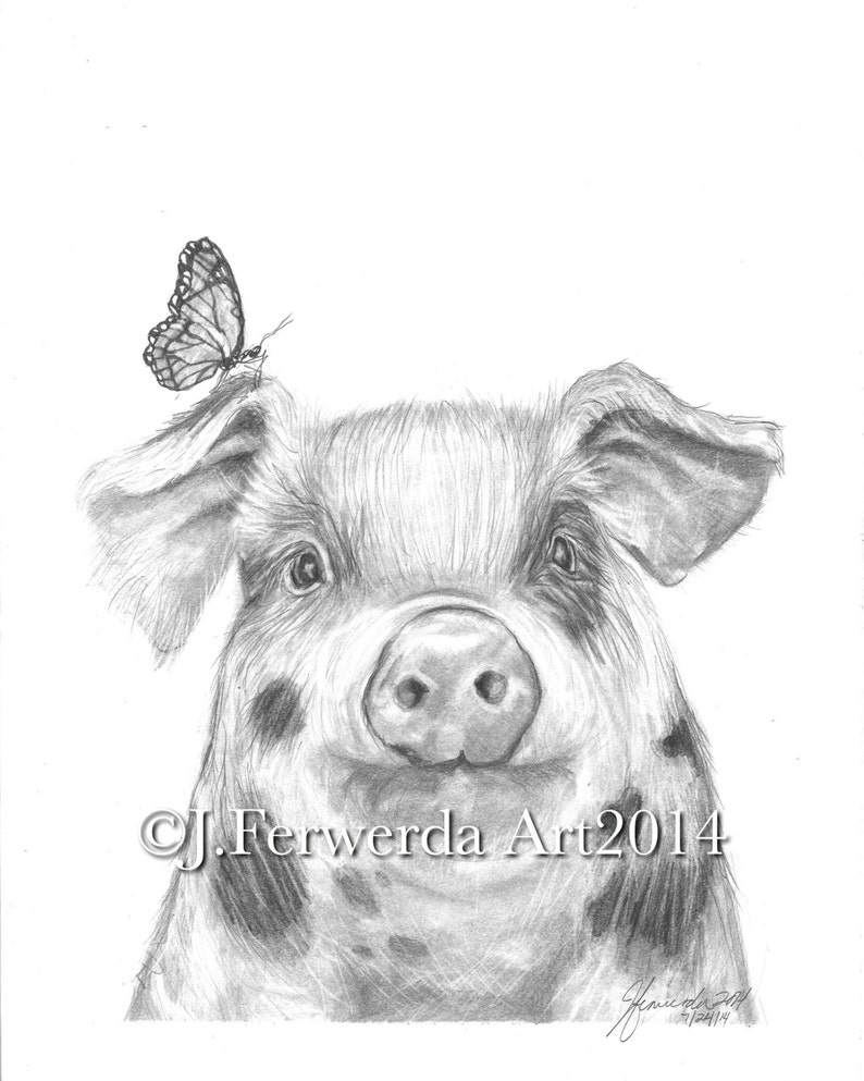 Pencil drawing print pig with wings