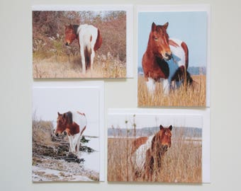 Horse Photo Blank Note Greeting Cards 5x7 Any Occasion Fine Art Card Set of 4 (four)