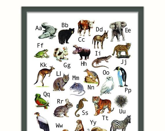 vintage animal alphabet print