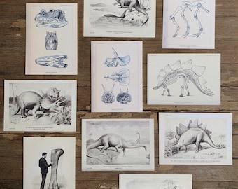vintage old dinosaur flashcards