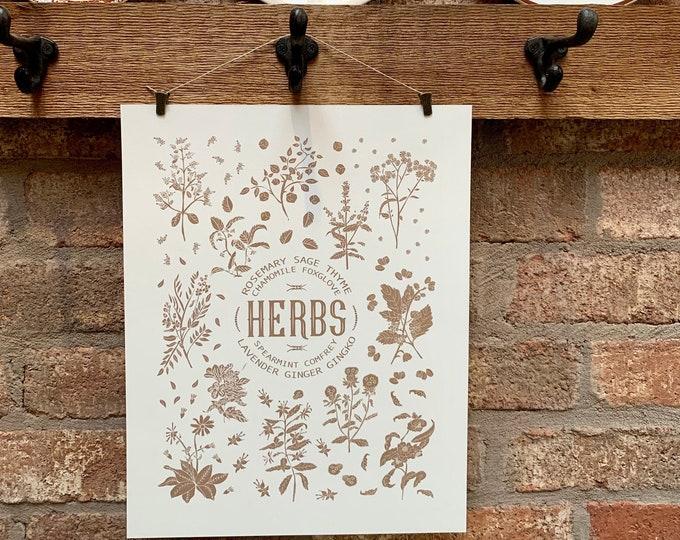 hand drawn herb print