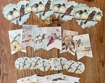 winter bird tags/ ornaments set