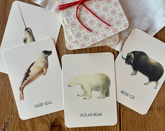 polar animal memory game