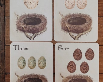 vintage eggs and nest counting flashcards