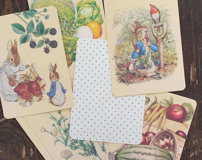 Featured listing image: Peter Rabbit flashcards