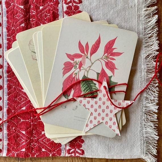 winter botanicals flashcards