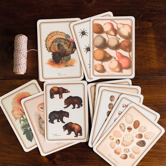 fall counting flashcards 10 or 20
