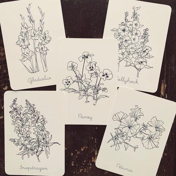 minimal simple flower flashcards