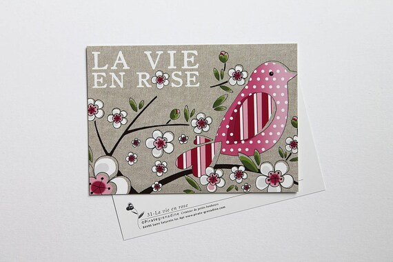 "Illustrated postcard by squash Pirate ""my vie en rose"""