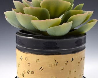 Indoor Planter with Saucer, Medium Size, Stoneware with Textured Pattern of Lines and Dots in yellow terra sigillata. Gloss Black Glaze