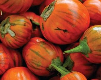 Heirloom Organic Eggplant Seeds - Non GMO - Vegetable Gardening Grow Your Own Food