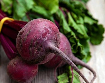 USA Heirloom Organic Beets Seeds - Detroit Dark Red - Non GMO - Open Pollinated - Vegetable Gardening Grow Your Own Food