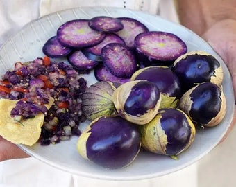 USA Heirloom Organic Purple Tomatillo Seeds - Non GMO - Open Pollinated - Vegetable Gardening Grow Your Own Food