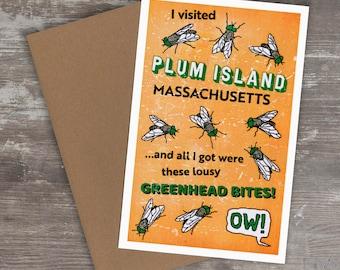Greeting Card // PLUM ISLAND GREENHEADS (Massachusetts, Newburyport, Newbury, Salisbury, Merrimack River)