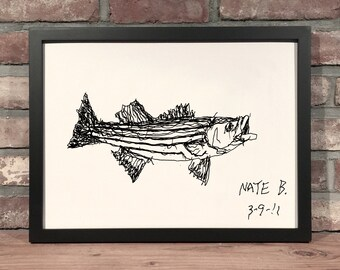 Art Print // STRIPED BASS - Pen & Ink