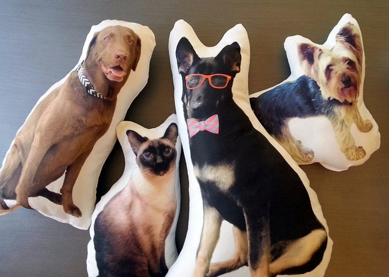 Custom Pet Photo Pillow College Student Gift College image 0