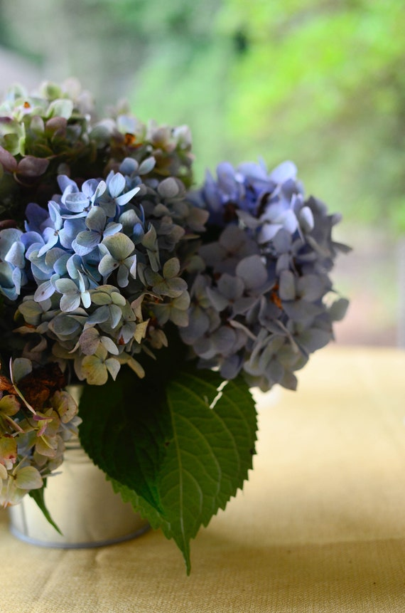 Hydrangea Office Decor Home Flower Blue Outdoor