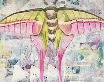 Idealization-Original Canvas Moth Painting