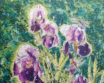 My Garden Irises