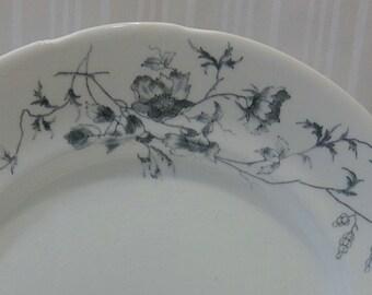 8 Vintage blau geblümten China Platten-Drechslerei Tunstall Ida