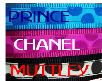 Dog Collar ~ 'Bubbles' , embroidered with name and phone number.