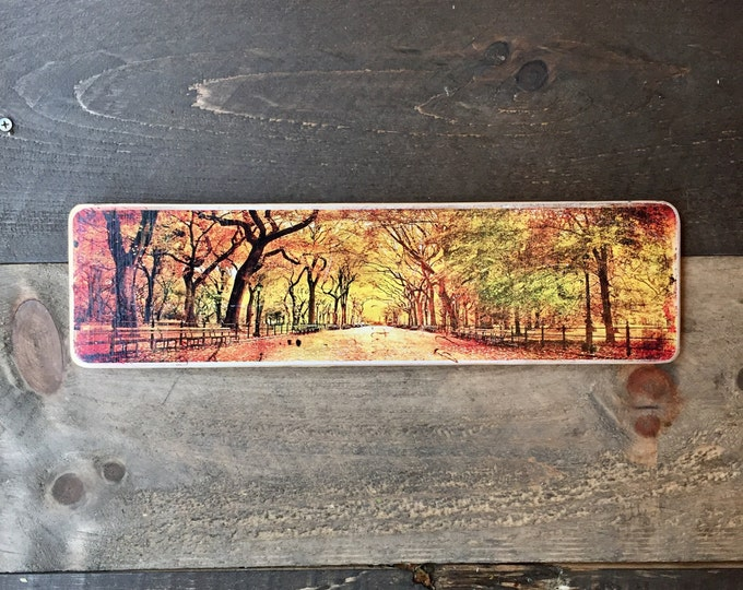 The Mall Central park Manhattan New York City Original Horizontal Landscape Photography Hand Crafted on Wood - 4X15inches