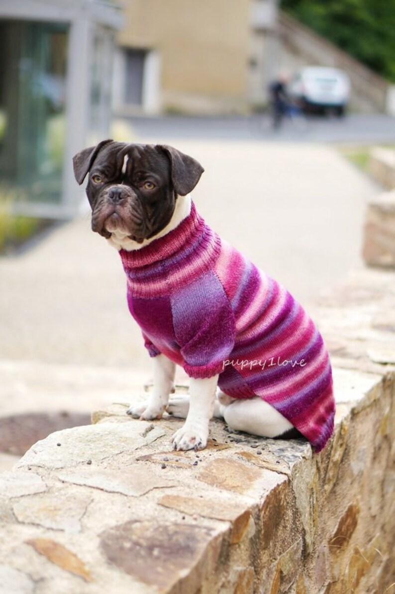 8edc7d4494ee9 Bulldog Pullover Frenchie Kleidung französische Bulldogge