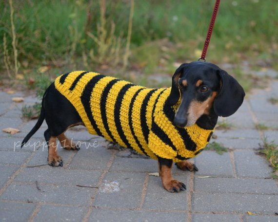 Dog Sweater Dachshund Sweater Dog Clothes Bee Costume For Pets Etsy