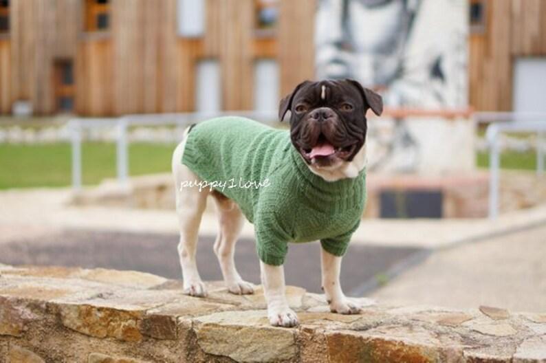 83b11f86476cd Frenchie Kleidung französische Bulldogge Pullover