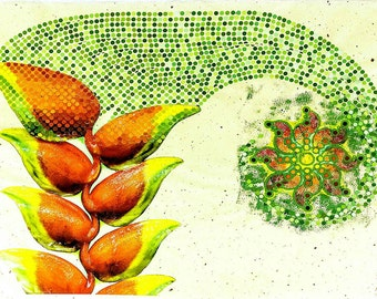 """High Quality Print of """"Seeds of Life"""""""