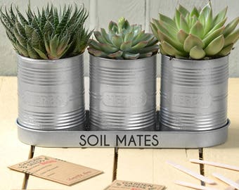 Tin Message Planters - 10th Anniversary Gift - Personalised Metal Planter - Tin Can Indoor Planters - Tenth Anniversary Gift - Couple Gift