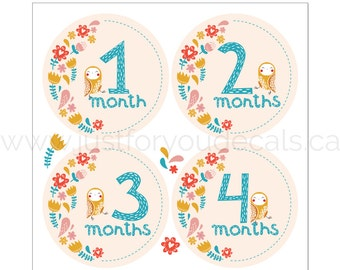 Baby Month Stickers, Monthly Baby Stickers, Baby Monthly Milestone Stickers, Modern Monthly Baby Stickers, Stickers for Onesies, Months 1-12