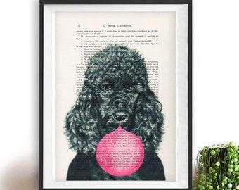 Poodle print, Poodle art, bubblegum, dog with bubblegum, vintage paper, dog poster, dog print, dog illustration, dog drawing