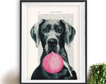Great dane print, Great Dane art, bubblegum, dog with bubblegum, vintage paper, dog poster, dog print, dog illustration, dog drawing