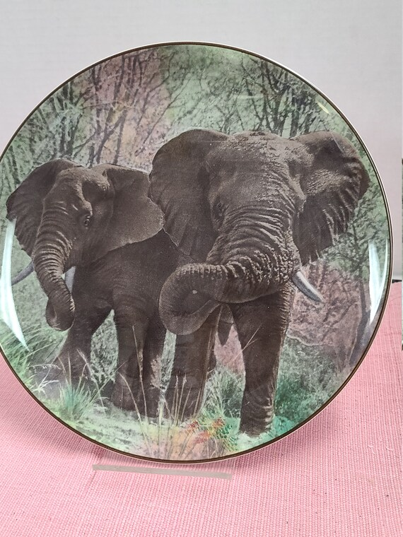 African Elephant plate