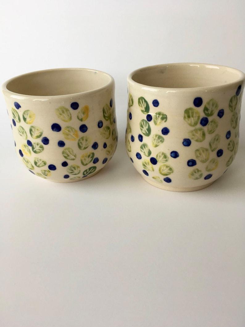 Cups Set Blueberry Bush