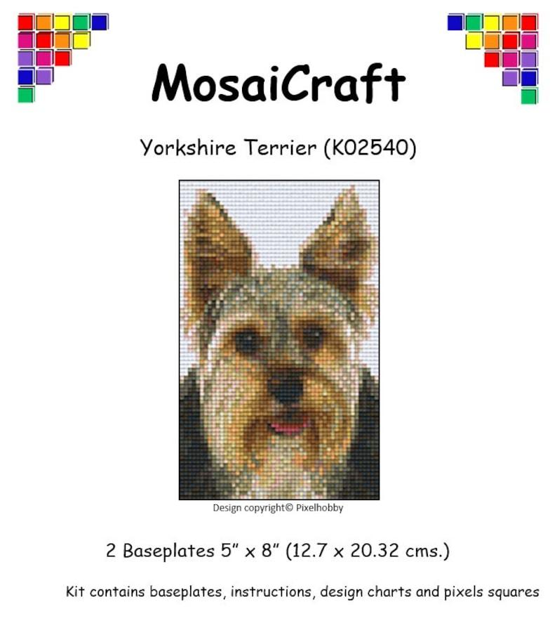 MosaiCraft Pixel Craft Mosaic Art Kit /'Changing Squares/' Pixelhobby