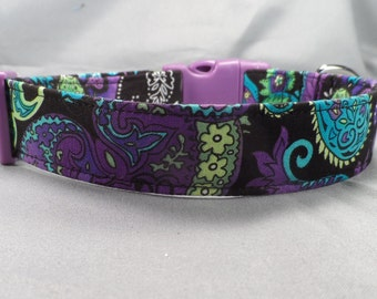Blue and Purple Paisley Dog Collar on Black