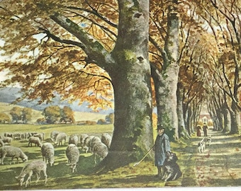 Vintage Farm Country Life Postcard Landscape Artist Postcard,