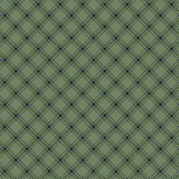 Liberty Star Kim Diehl Quilt Fabric By The Yard - Stars and Ticking Plaid Teal Green 1587 11