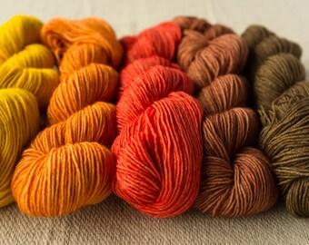 Autumn Dick Gradient Yarn Set 5 x 50g SW BFL Wool