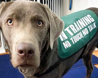 In Training, No Touch, No Talk Dog Jacket Vest