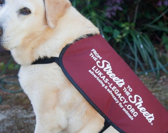 From the Streets to the Sheets - Rescue Awareness Jacket Vest