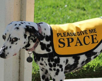"Jacket Vest for Dogs Working on Issues - ""Please Give Me Space"""