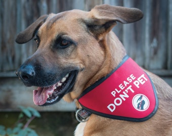 Please Don't Pet Bandana Scarf for Dogs