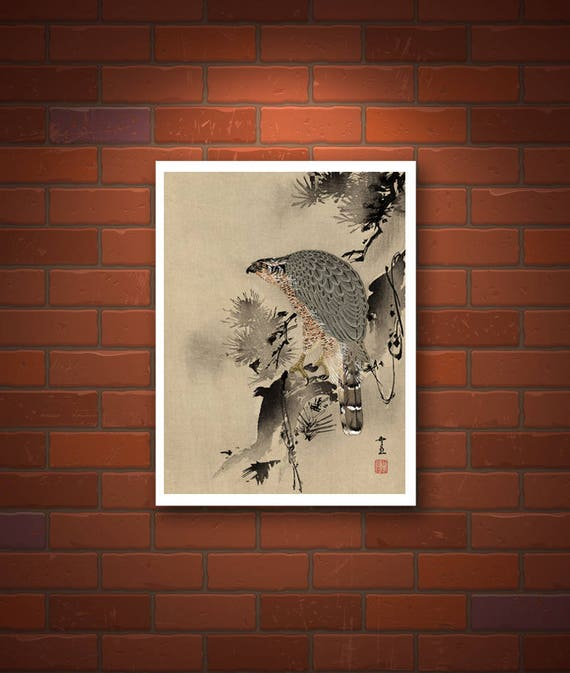 Fine Art Print Japanese Print Reproductions A Bird of Prey on a limb