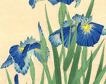 Japanese art, Flowers floral plants botanical art prints, posters, Japanese Irises FINE ART PRINT, japan flowers woodblock prints, paintings