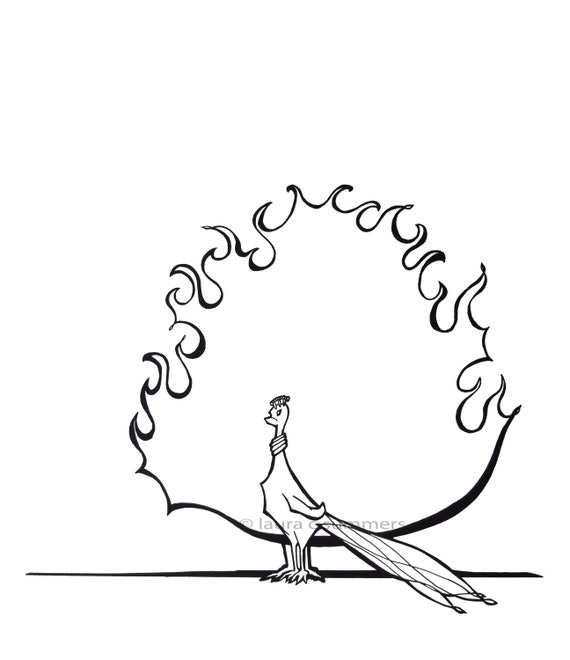 Print Black White Peacock Simple Line Drawing Peacock Etsy