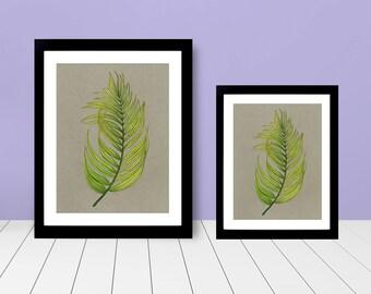 Framed Print -Palm Leaf